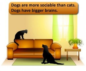Science proves dogs have bigger brains - more sociable than cats.