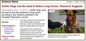 Sniffer dogs detect cancer - article link