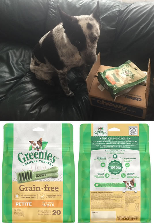 Blue Belle Reviews Grain Free Greenies