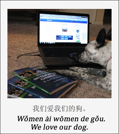 Teaching our dog mandarin chinese