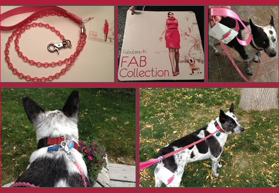 FabuLeash Dog Leash