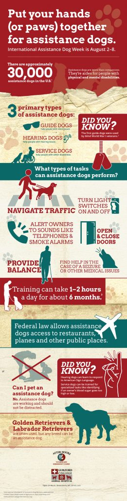 Assistance Dog Week Infographic