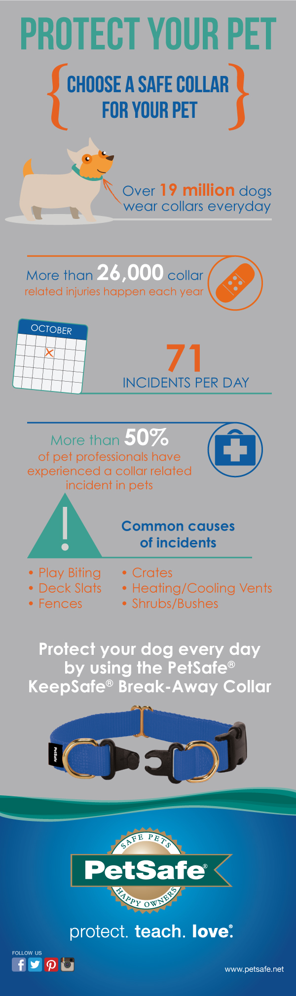 Petsafe Collar Safety Awareness Week Infographic